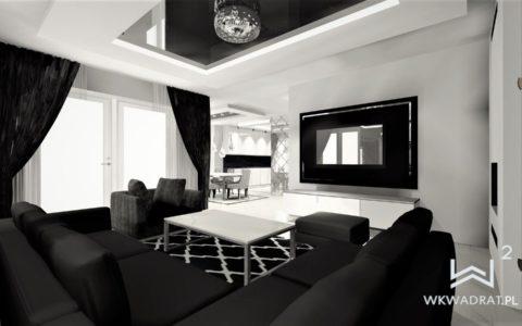widok salonu w domu jednorodzinnym